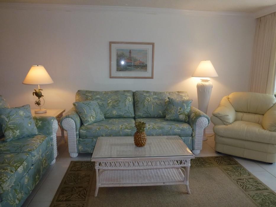 Living room - queen sleep sofa