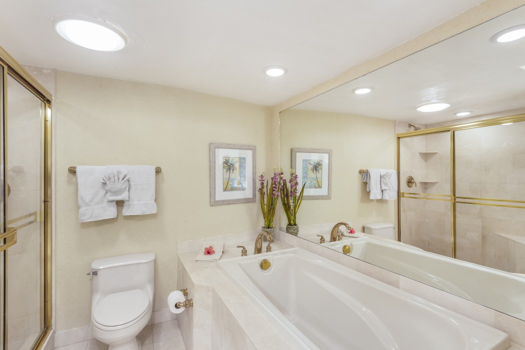 Master bath includes a shower and bathtub
