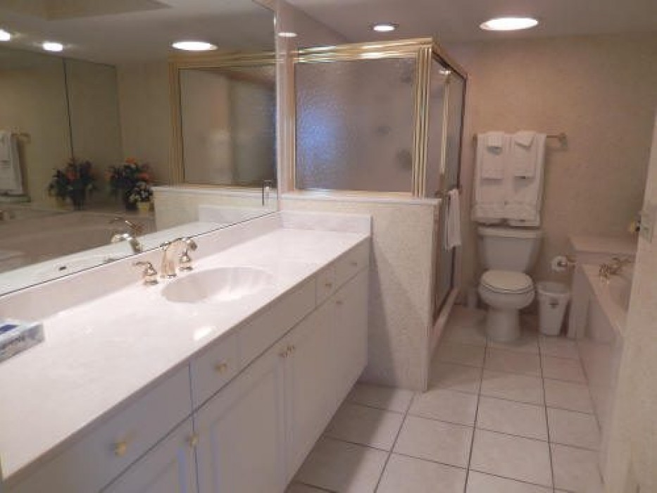 Master Bath with walk-in shower and separate soaking tub